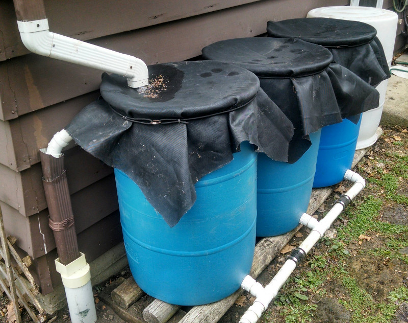 cheap diy expandable rainwater collection system ecosistency